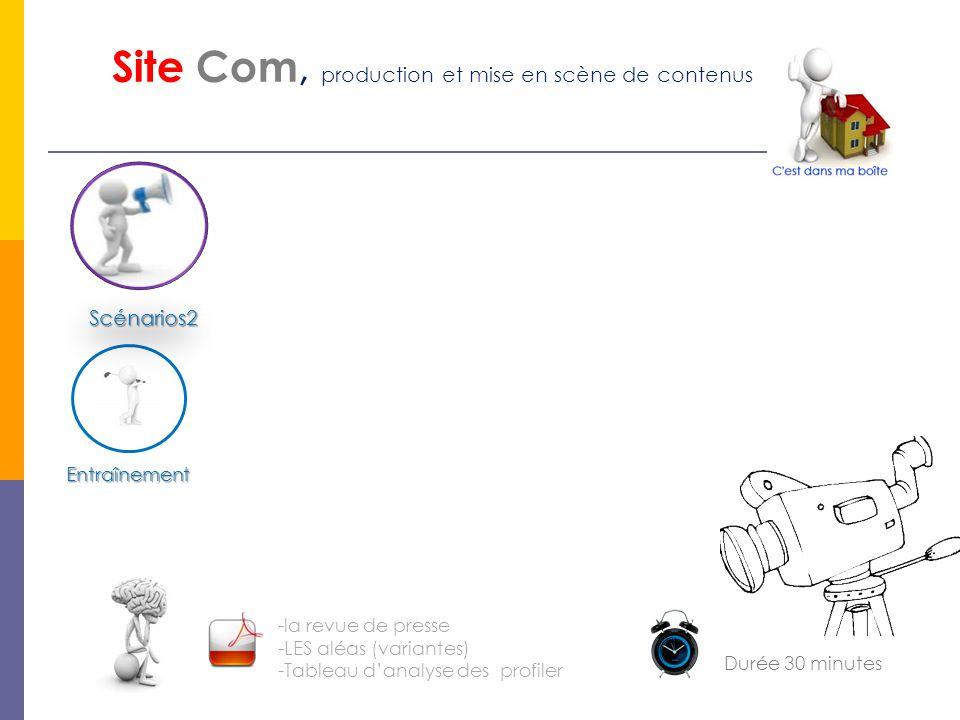 Entraînement Site Com, production et mise en scène de contenus Scénarios2 -la revue de presse -LES aléas (variantes) -Tableau d'analyse des profiler D