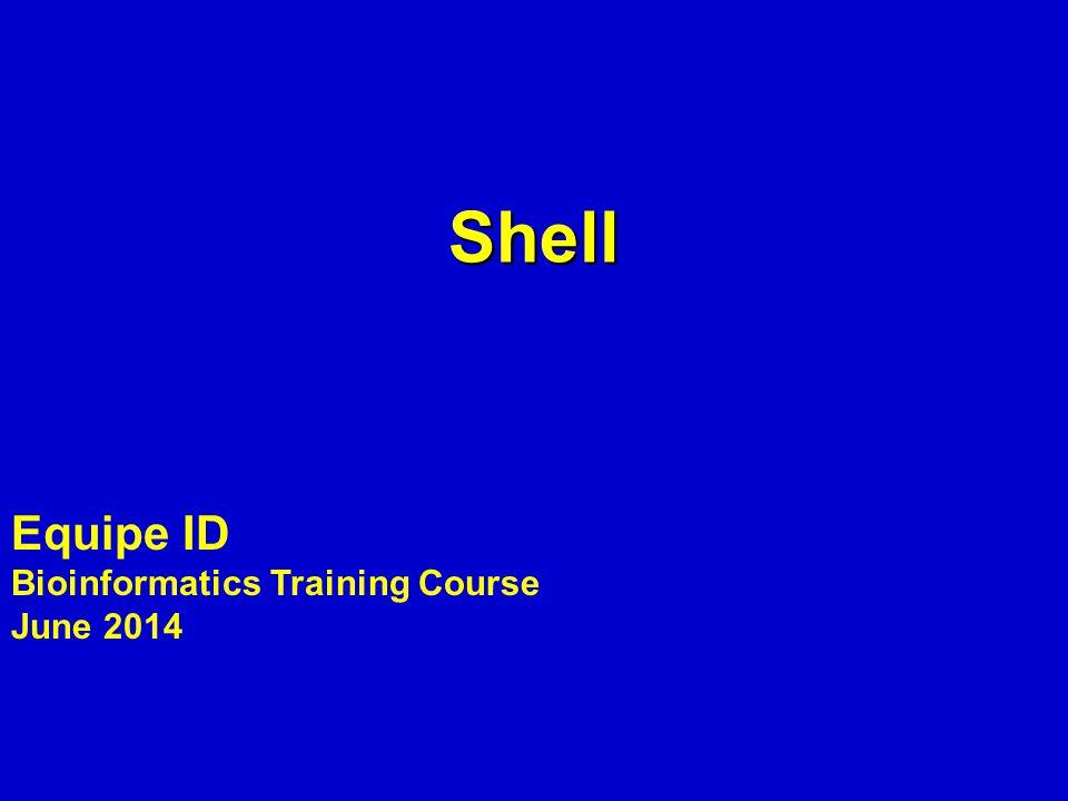 Shell Equipe ID Bioinformatics Training Course June 2014