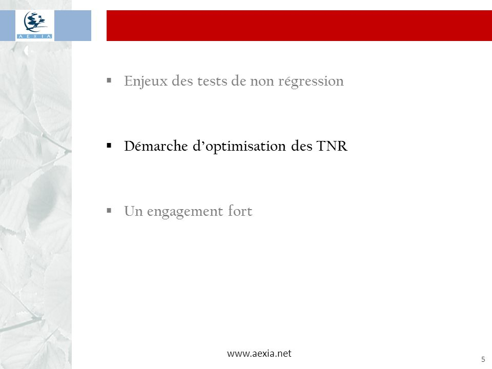 www.aexia.net 5  Enjeux des tests de non régression  Démarche d'optimisation des TNR  Un engagement fort