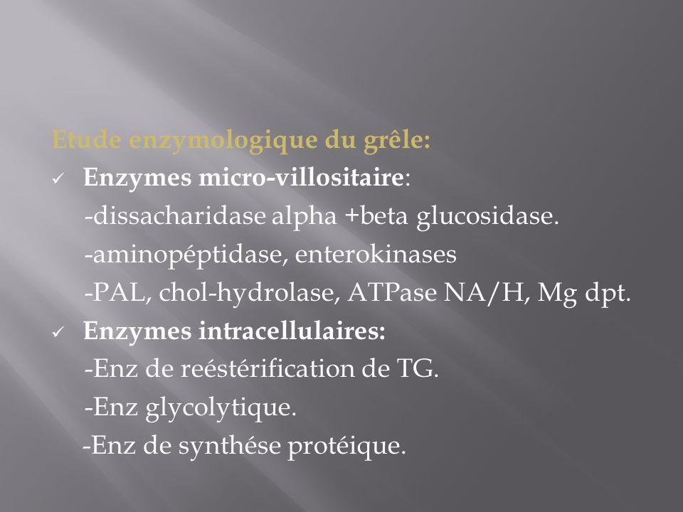 Etude enzymologique du grêle: Enzymes micro-villositaire : -dissacharidase alpha +beta glucosidase. -aminopéptidase, enterokinases -PAL, chol-hydrolas