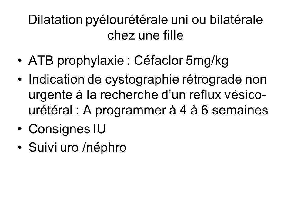 Dilatation pyélourétérale uni ou bilatérale chez une fille ATB prophylaxie : Céfaclor 5mg/kg Indication de cystographie rétrograde non urgente à la re