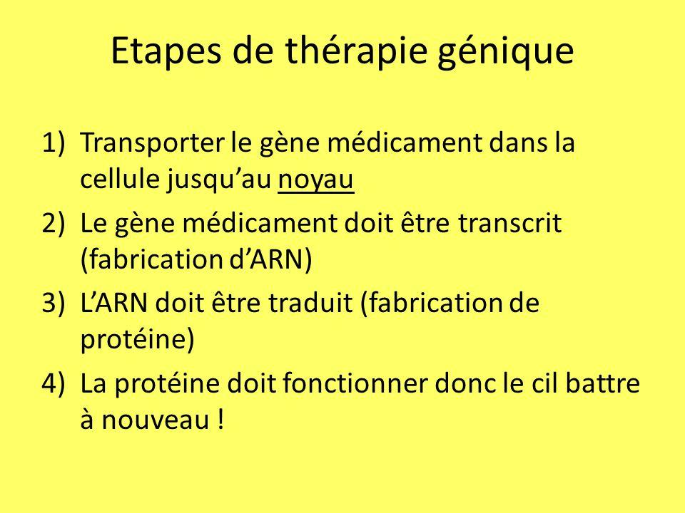 Etapes de thérapie génique 1)Transporter le gène médicament dans la cellule jusqu'au noyau 2)Le gène médicament doit être transcrit (fabrication d'ARN