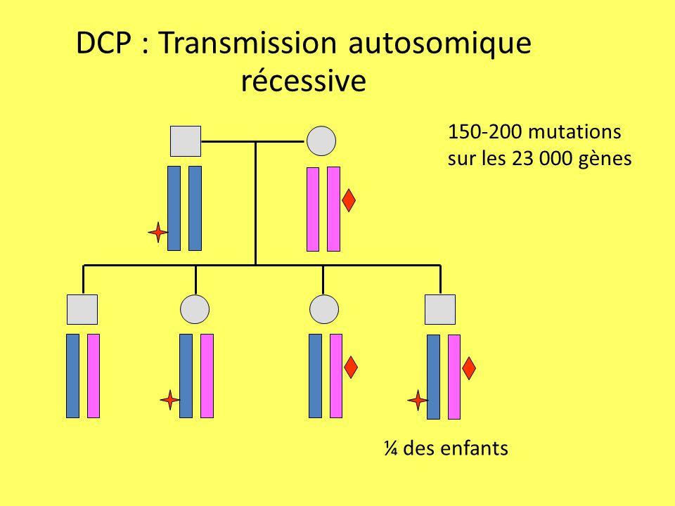 DCP : Transmission autosomique récessive 150-200 mutations sur les 23 000 gènes ¼ des enfants