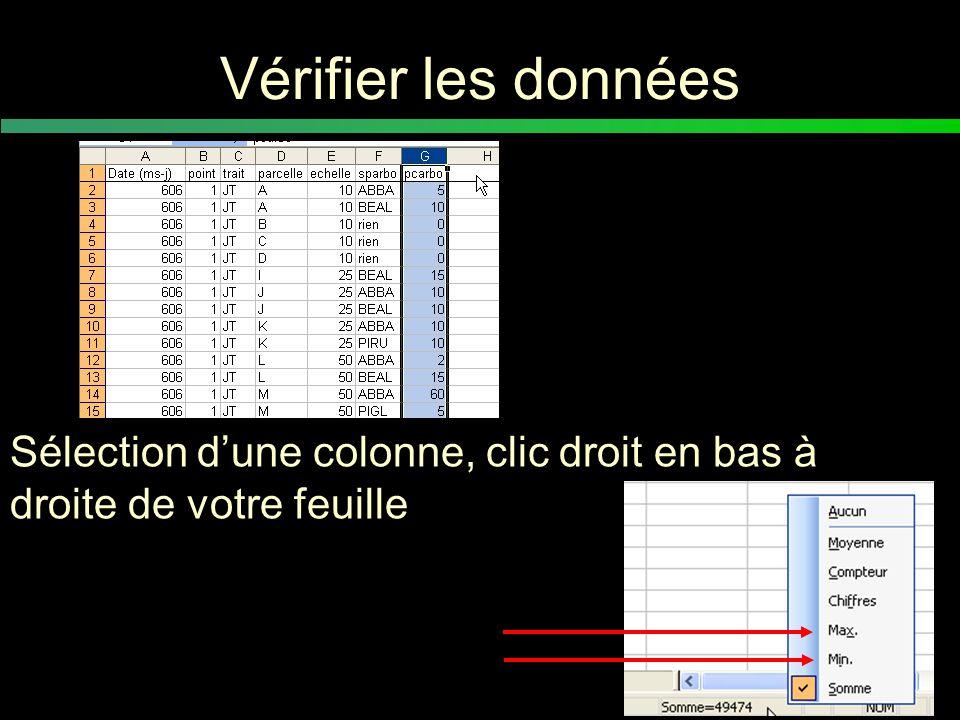 Vérifier les données Sélection d'une colonne, clic droit en bas à droite de votre feuille