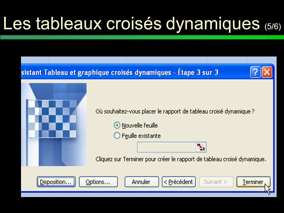 Les tableaux croisés dynamiques (6/6) On ne peut pas importer ces tableaux dans un logiciel de traitement statistiques