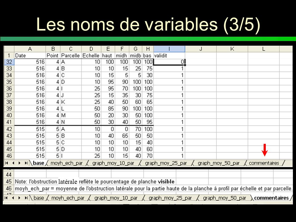 Les noms de variables (4/5) La colonne « remarque » dans la feuille de données = une cote de validité dans le tableau de données qui permet : –inclusion dans l'analyse ou –exclusion dans l'analyse VÉRIFIER LES DONNÉES