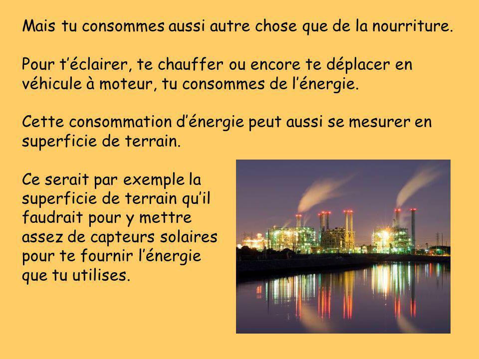 Pour éliminer tes déchets ou la pollution que tu engendres, il faut aussi consommer des ressources qui peuvent se mesurer en superficie.