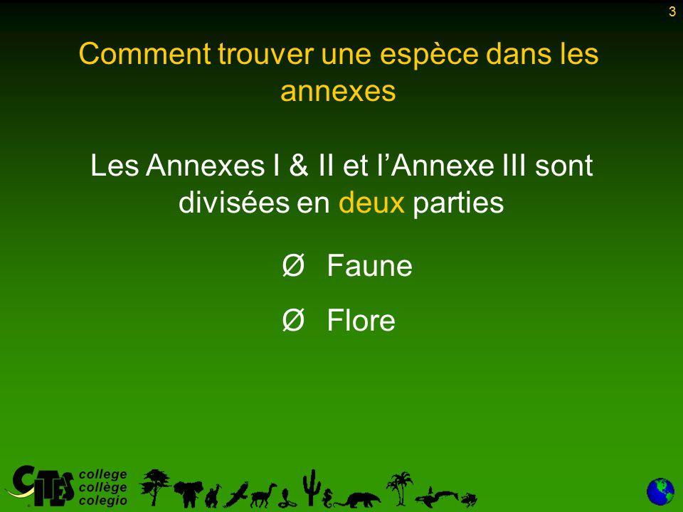 3 Les Annexes I & II et l'Annexe III sont divisées en deux parties Ø Ø Faune Ø Ø Flore 3 Comment trouver une espèce dans les annexes
