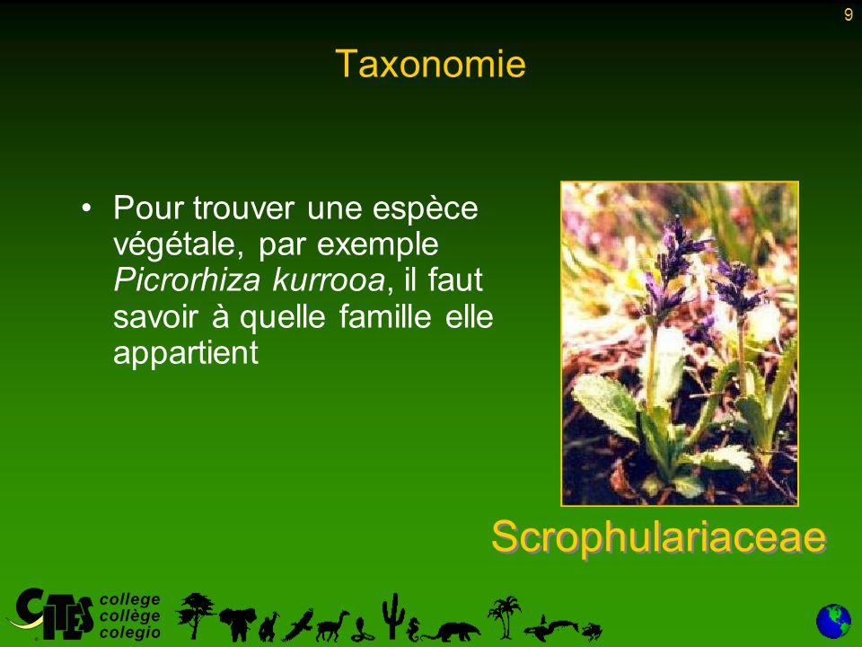 10 Taxonomie Les règnes animal et végétal sont subdivisés en groupes de plus en plus fins Classe Ordre Famille Genre E spèce (spp.) Sous-espèce (ssp.) Phylum 10