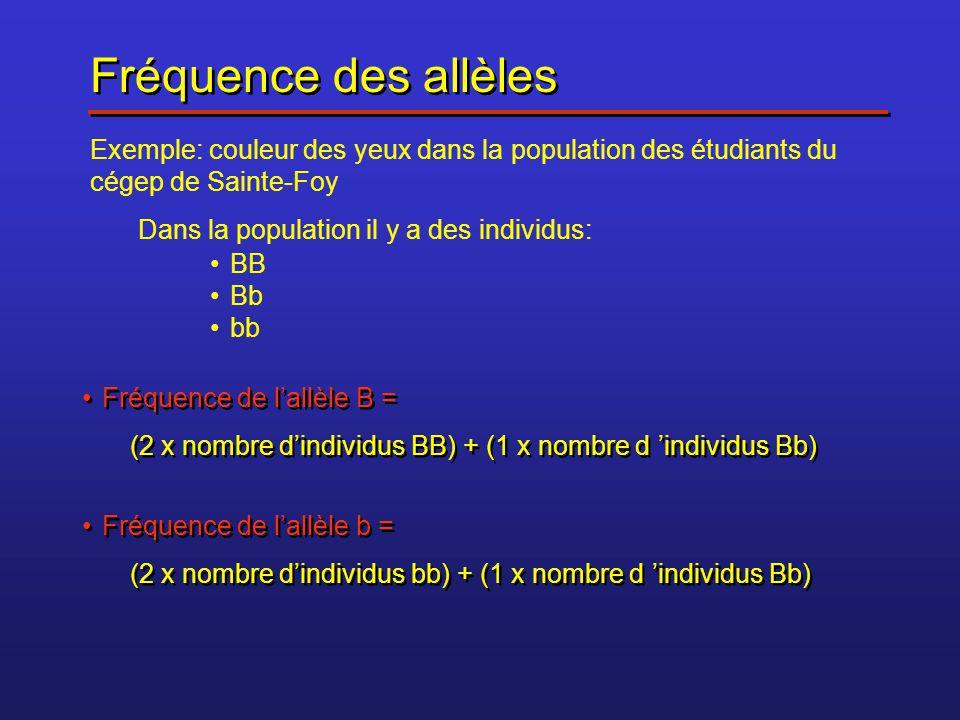 Exemple: Si dans une classe de 35 étudiants il y a: 10étudiants qui sont BB 20 étudiants qui sont Bb 5 étudiants qui sont bb Exemple: Si dans une classe de 35 étudiants il y a: 10étudiants qui sont BB 20 étudiants qui sont Bb 5 étudiants qui sont bb Fréquence de B = (2 x 10) + 20 = 40 Fréquence de b = (2 x 5) + 20 = 30 DONC, chez les 35 étudiants de la classe, il y a : 40 allèles B 30 allèles b Quelle est la fréquence de B .