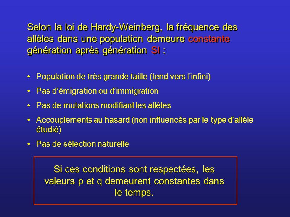 Selon la loi de Hardy-Weinberg, la fréquence des allèles dans une population demeure constante génération après génération SI : Population de très gra