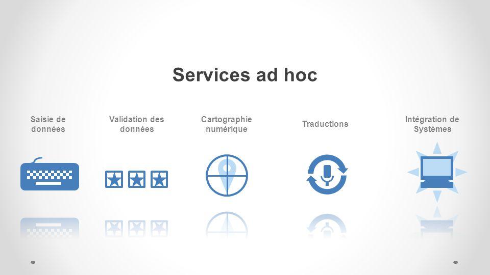 Services ad hoc Saisie de données Validation des données Cartographie numérique Traductions Intégration de Systèmes