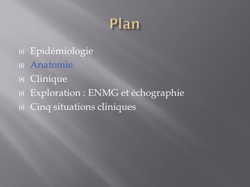  Epidémiologie  Anatomie  Clinique  Exploration : ENMG et échographie  Cinq situations cliniques