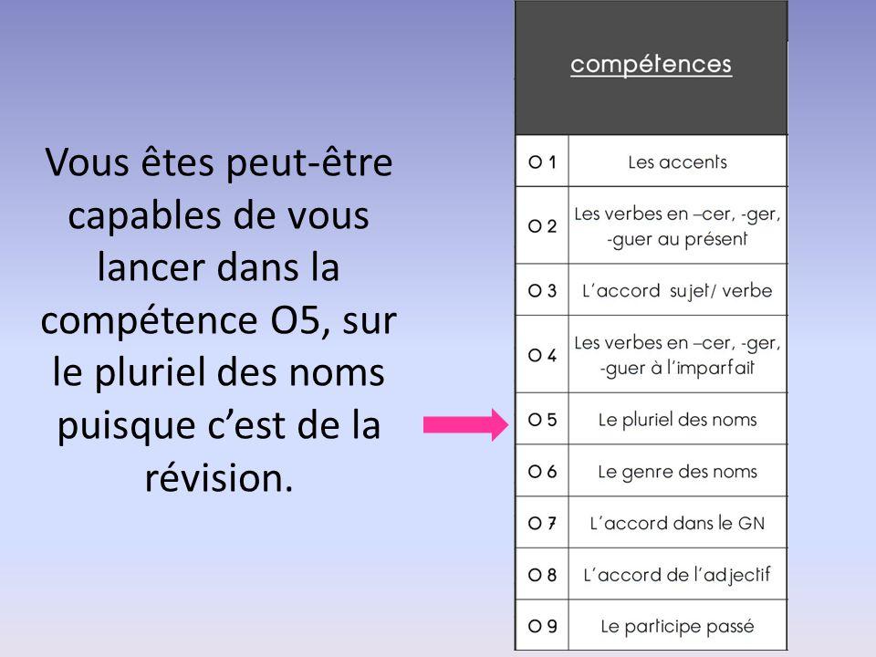 Vous êtes peut-être capables de vous lancer dans la compétence O5, sur le pluriel des noms puisque c'est de la révision.