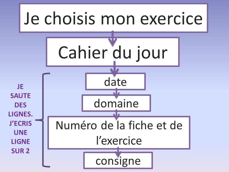 Je choisis mon exercice Cahier du jour date domaine Numéro de la fiche et de l'exercice consigne JE SAUTE DES LIGNES. J'ECRIS UNE LIGNE SUR 2