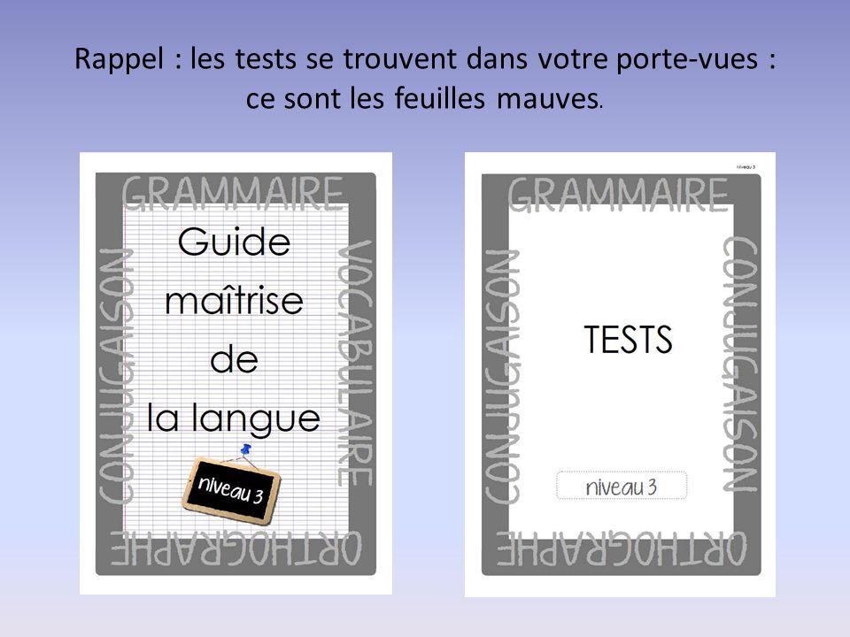Rappel : les tests se trouvent dans votre porte-vues : ce sont les feuilles mauves.