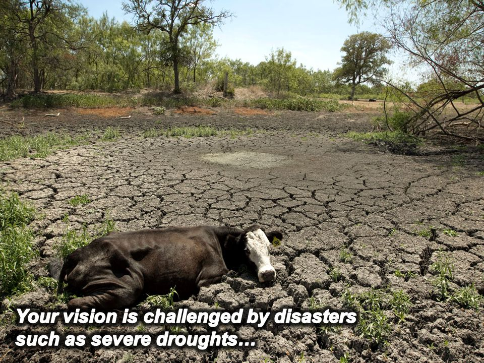Drought Severity Rating 1. INFORMATION SCIENTIFIQUE
