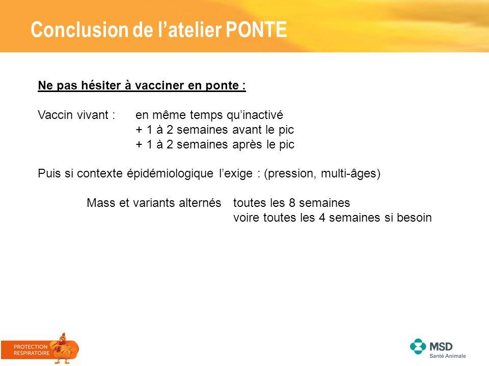 Conclusion de l'atelier PONTE Ne pas hésiter à vacciner en ponte : Vaccin vivant : en même temps qu'inactivé + 1 à 2 semaines avant le pic + 1 à 2 sem