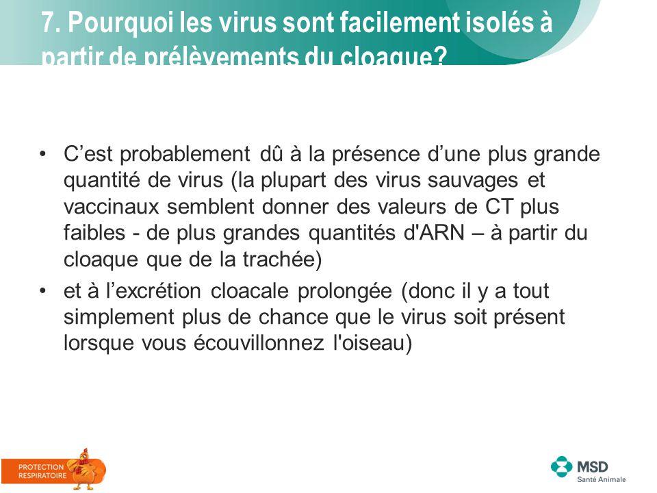 7. Pourquoi les virus sont facilement isolés à partir de prélèvements du cloaque? C'est probablement dû à la présence d'une plus grande quantité de vi