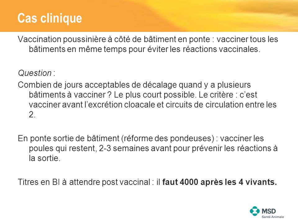 Vaccination poussinière à côté de bâtiment en ponte : vacciner tous les bâtiments en même temps pour éviter les réactions vaccinales. Question : Combi