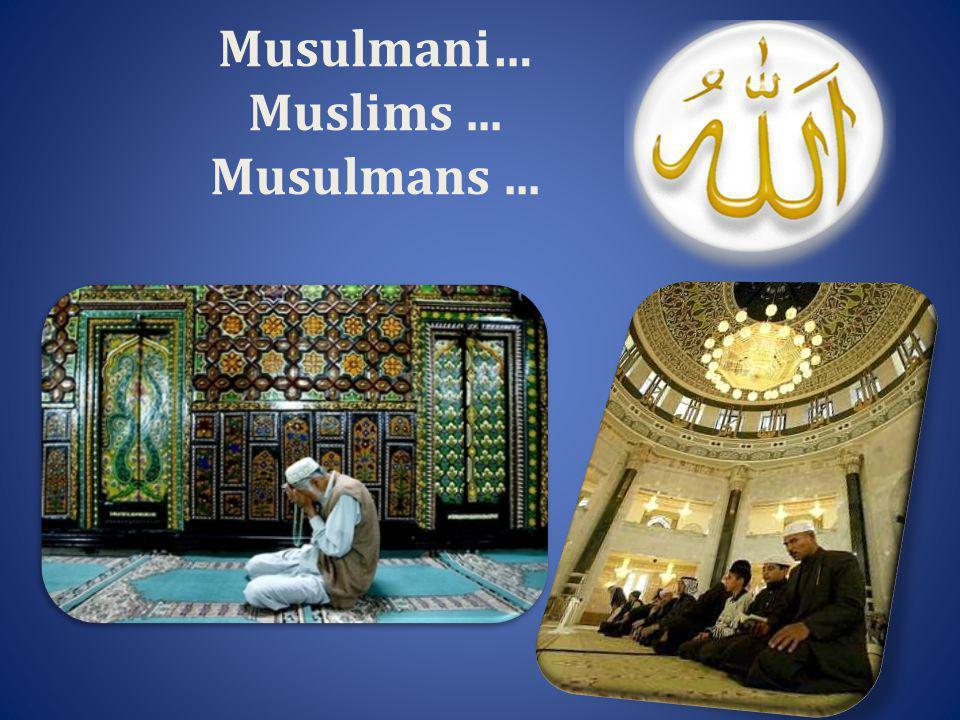 Musulmani… Muslims... Musulmans...