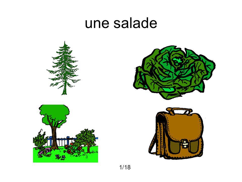 une salade 1/18