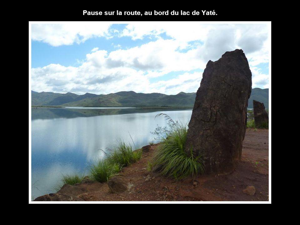 Pause sur la route, au bord du lac de Yaté.