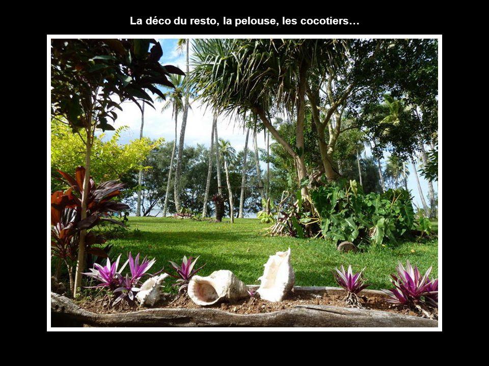 La déco du resto, la pelouse, les cocotiers…