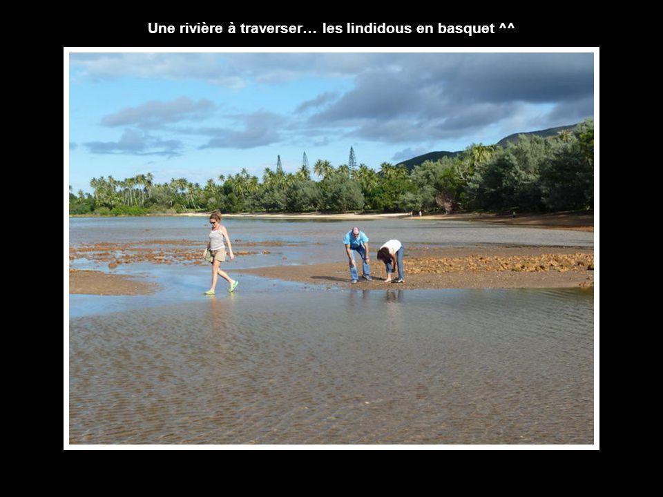 Une rivière à traverser… les lindidous en basquet ^^