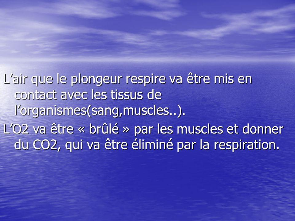 Pendant la plongée Plus le plongeur descend, plus la pression de l'air respiré va augmenter et plus les tissus vont absorber une grande quantité d'N2.