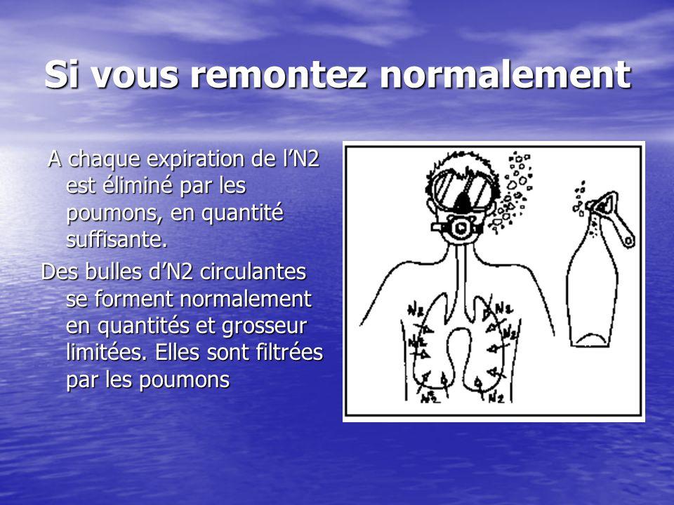 Si vous remontez normalement A chaque expiration de l'N2 est éliminé par les poumons, en quantité suffisante. A chaque expiration de l'N2 est éliminé