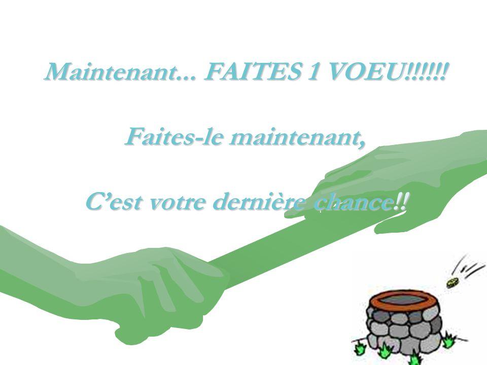 Maintenant... FAITES 1 VOEU!!!!!! Faites-le maintenant, C'est votre dernière chance!!
