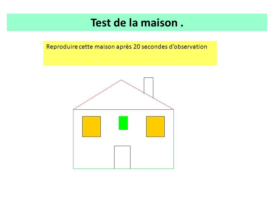 . Test de la maison. Reproduire cette maison après 20 secondes d'observation