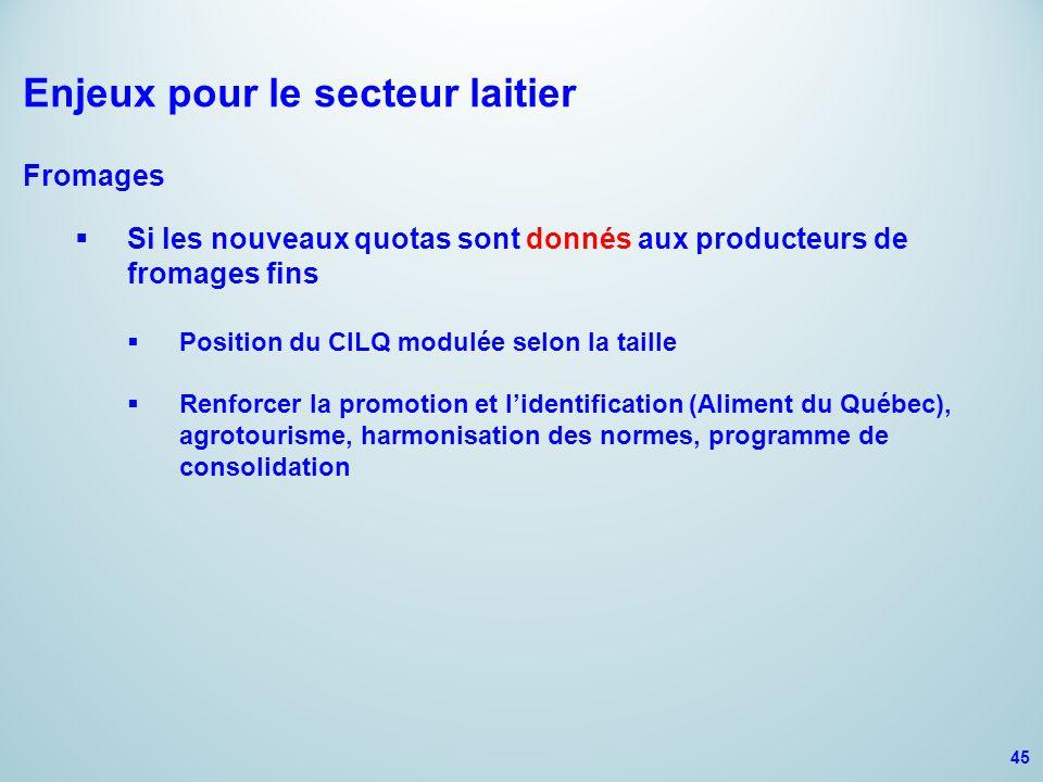 Enjeux pour le secteur laitier Fromages  Si les nouveaux quotas sont donnés aux producteurs de fromages fins  Position du CILQ modulée selon la taille  Renforcer la promotion et l'identification (Aliment du Québec), agrotourisme, harmonisation des normes, programme de consolidation 45