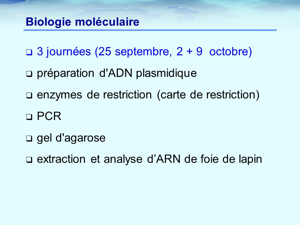 Biologie moléculaire  3 journées (25 septembre, 2 + 9 octobre)  préparation d ADN plasmidique  enzymes de restriction (carte de restriction)  PCR  gel d agarose  extraction et analyse d'ARN de foie de lapin