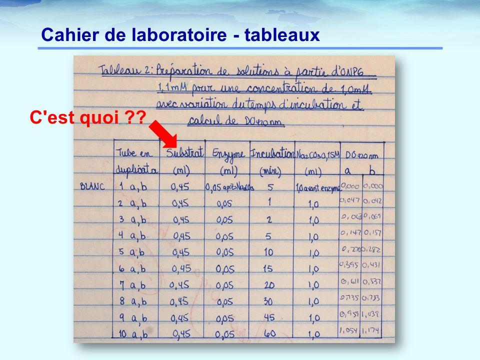 Cahier de laboratoire - tableaux C est quoi ??