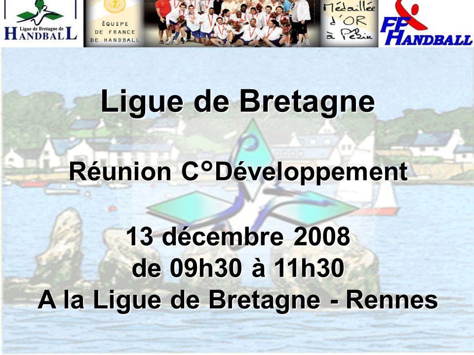 Ligue de Bretagne Réunion C°Développement 13 décembre 2008 de 09h30 à 11h30 A la Ligue de Bretagne - Rennes