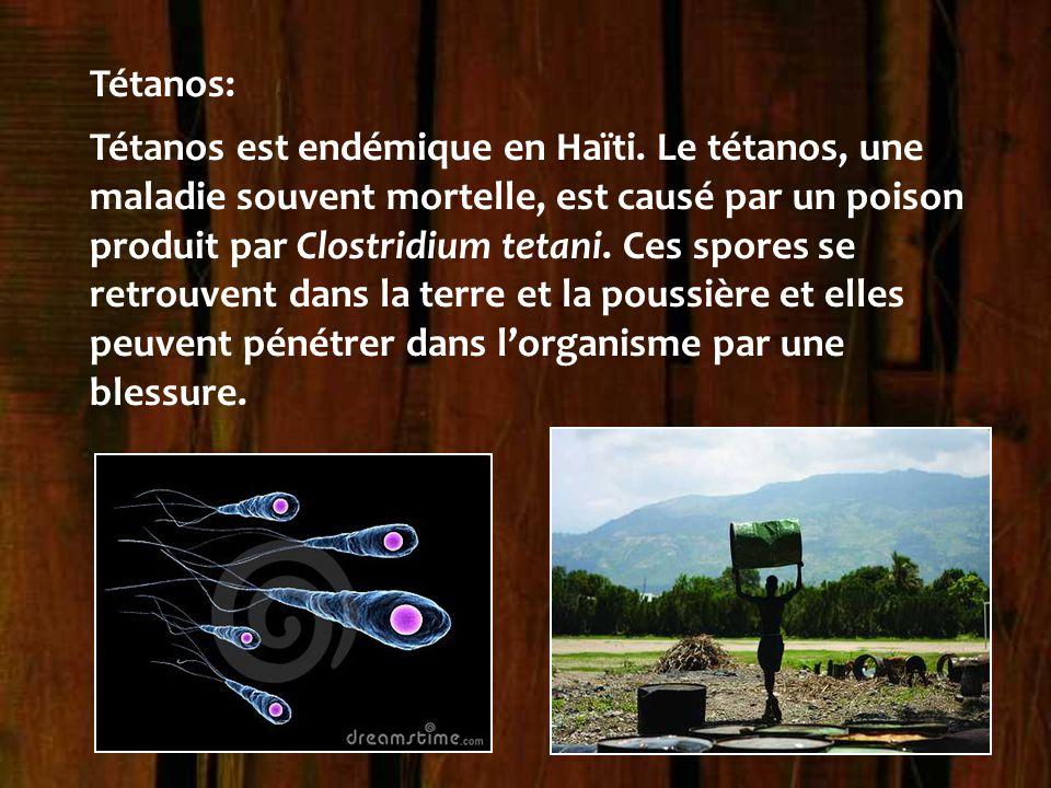 Tétanos: Tétanos est endémique en Haïti. Le tétanos, une maladie souvent mortelle, est causé par un poison produit par Clostridium tetani. Ces spores