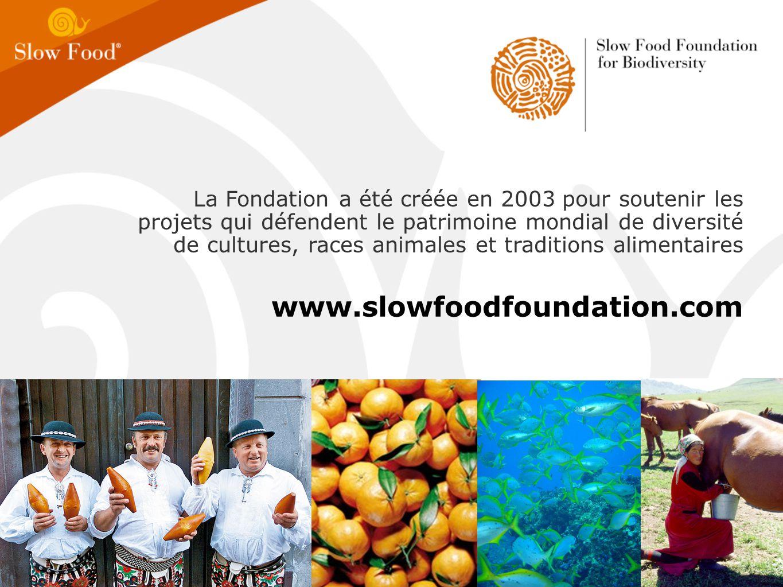 La Fondation a été créée en 2003 pour soutenir les projets qui défendent le patrimoine mondial de diversité de cultures, races animales et traditions alimentaires www.slowfoodfoundation.com