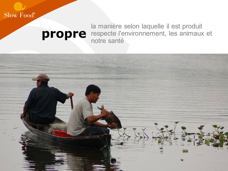 propre la manière selon laquelle il est produit respecte l environnement, les animaux et notre santé