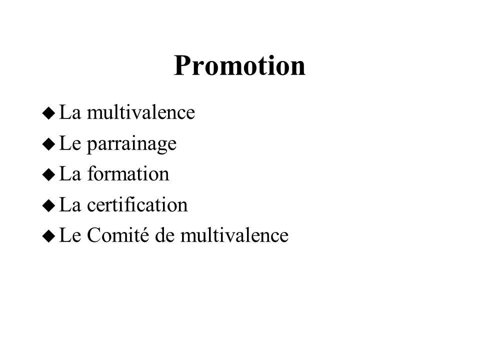 Promotion  La multivalence  Le parrainage  La formation  La certification  Le Comité de multivalence