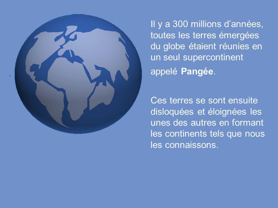 Il y a 300 millions d'années, toutes les terres émergées du globe étaient réunies en un seul supercontinent appelé Pangée. Ces terres se sont ensuite