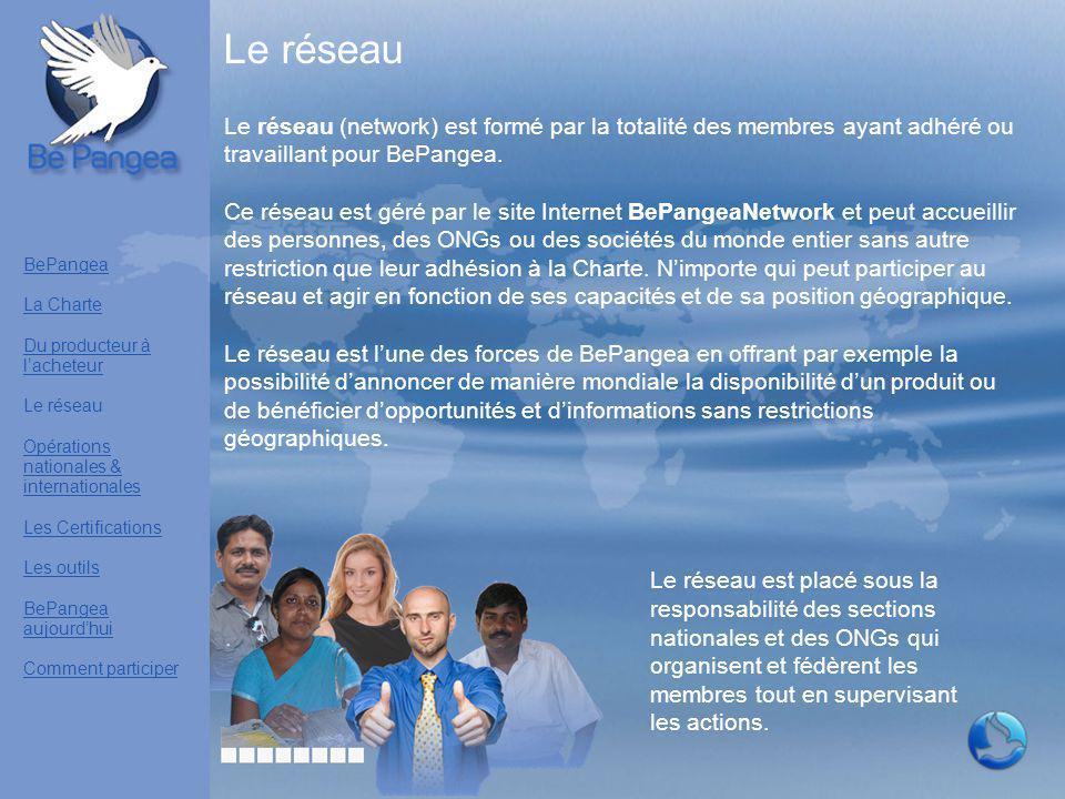 Le réseau Le réseau (network) est formé par la totalité des membres ayant adhéré ou travaillant pour BePangea.