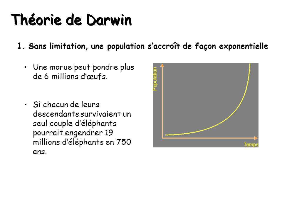 Théorie de Darwin 1.