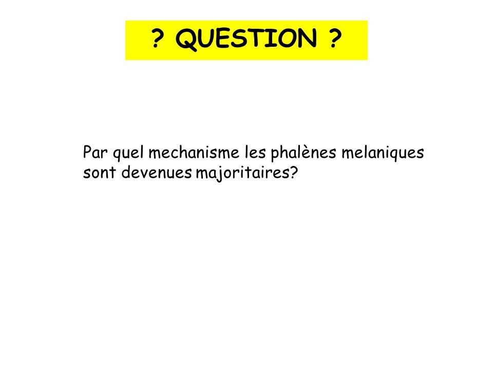 Par quel mechanisme les phalènes melaniques sont devenues majoritaires? ? QUESTION ?