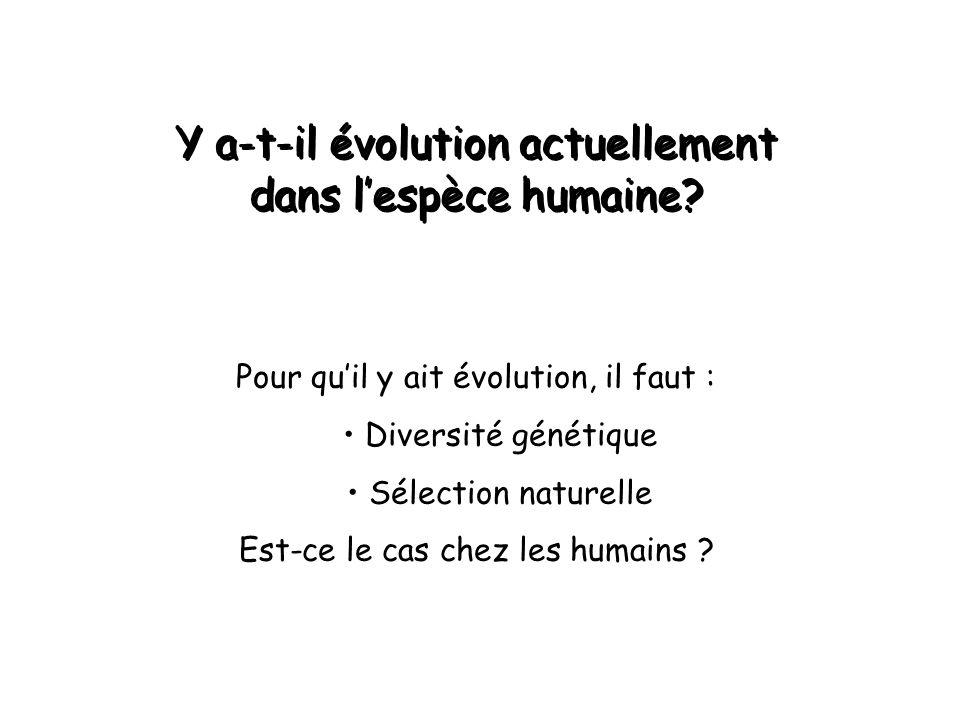 Y a-t-il évolution actuellement dans l'espèce humaine.