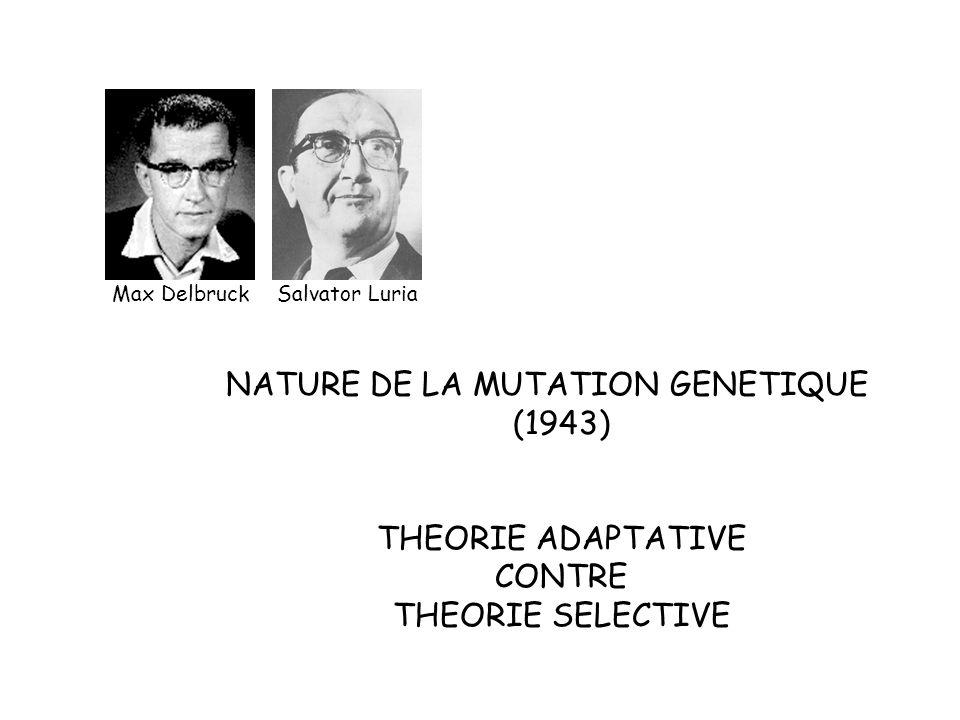 Max DelbruckSalvator Luria NATURE DE LA MUTATION GENETIQUE (1943) THEORIE ADAPTATIVE CONTRE THEORIE SELECTIVE