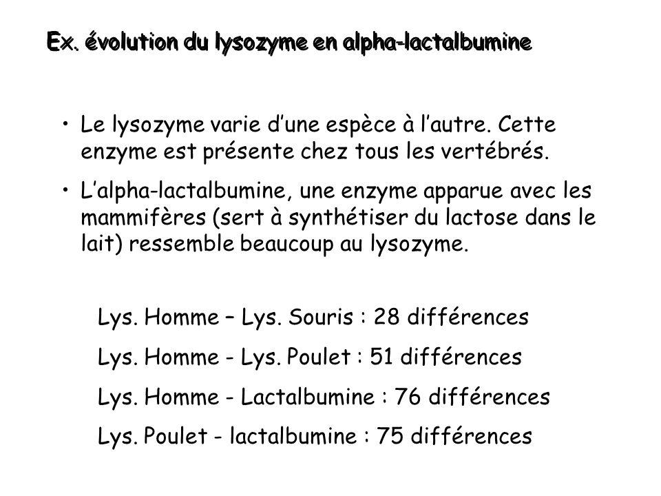 Ex.évolution du lysozyme en alpha-lactalbumine Lys.
