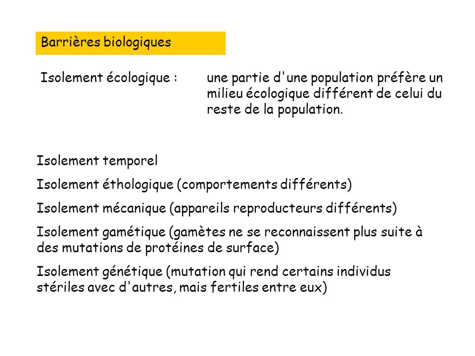 Barrières biologiques Isolement écologique :une partie d une population préfère un milieu écologique différent de celui du reste de la population.