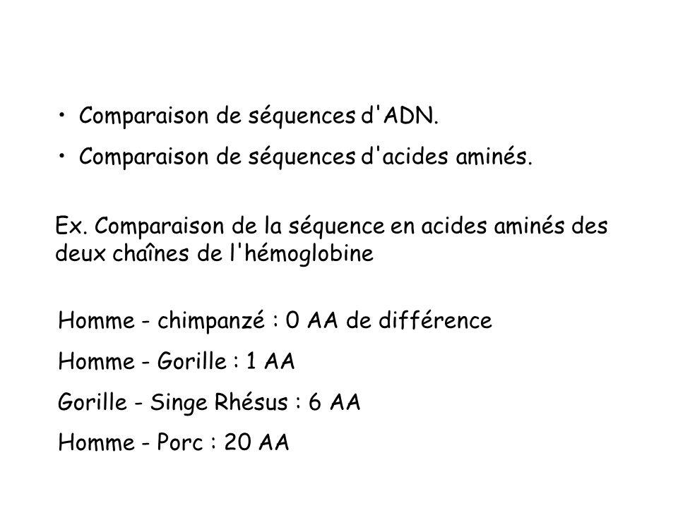 Comparaison de séquences d ADN.Comparaison de séquences d acides aminés.